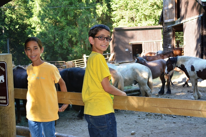 Admiring all the horses after the trail ride.