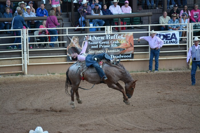 The truth about bareback bronc riding...you will need a chiropractor on speed dial :)
