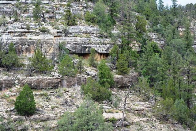 Walnut Canyon cave dwellings